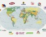 La exportación continúa aumentando entre las empresas de IbiLonjaVirtual